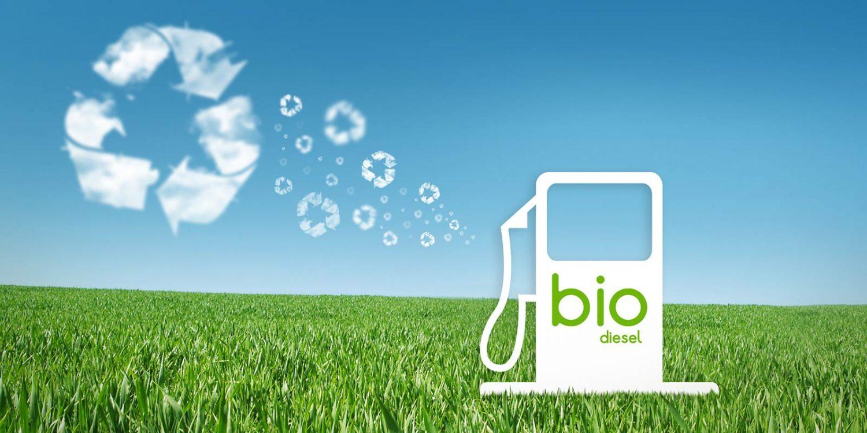 biodiesel is it worth considering essay